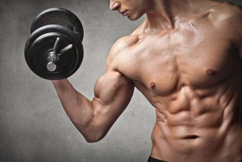 Fastest Way To Build Muscle Mass