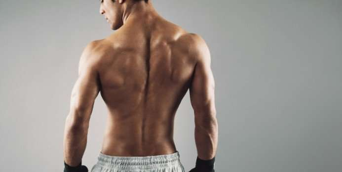 Best Back Workouts For Building Big Back Muscles