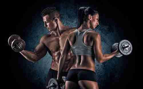 Biceps Workout Plan