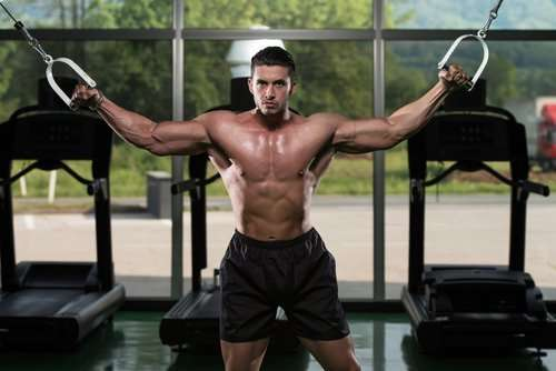 Best Chest Workout Program