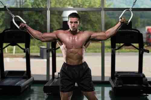 Best Chest Workout Program