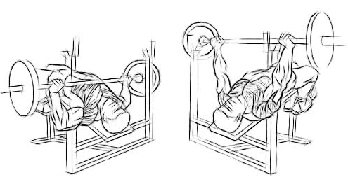 One Move For A Big Chest: Decline Barbell Bench Press