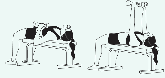 Dumbbell increases your range of motion, allows each side to do equal work and develop equally.