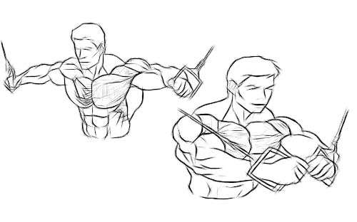 45 Minute Chest Building Workout Program Just Fitness
