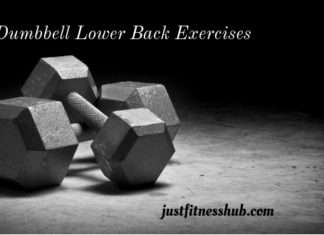 Dumbbell Lower Back Workouts