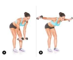Dumbbell Reverse Fly For Back
