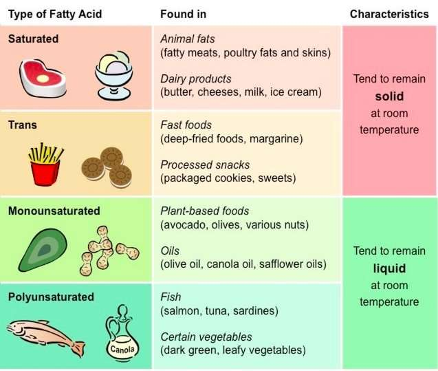 Types of Fat You Should Eat
