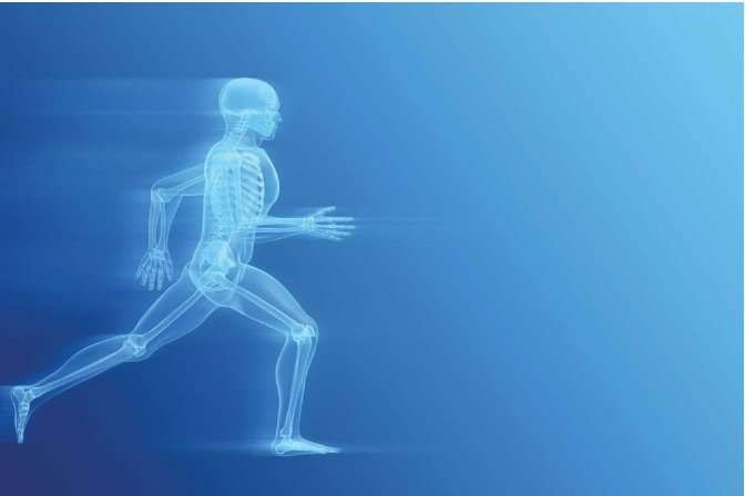 Healthy, Flexible, Strong Joints
