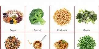 Sources of Protein For Plant Based Diet